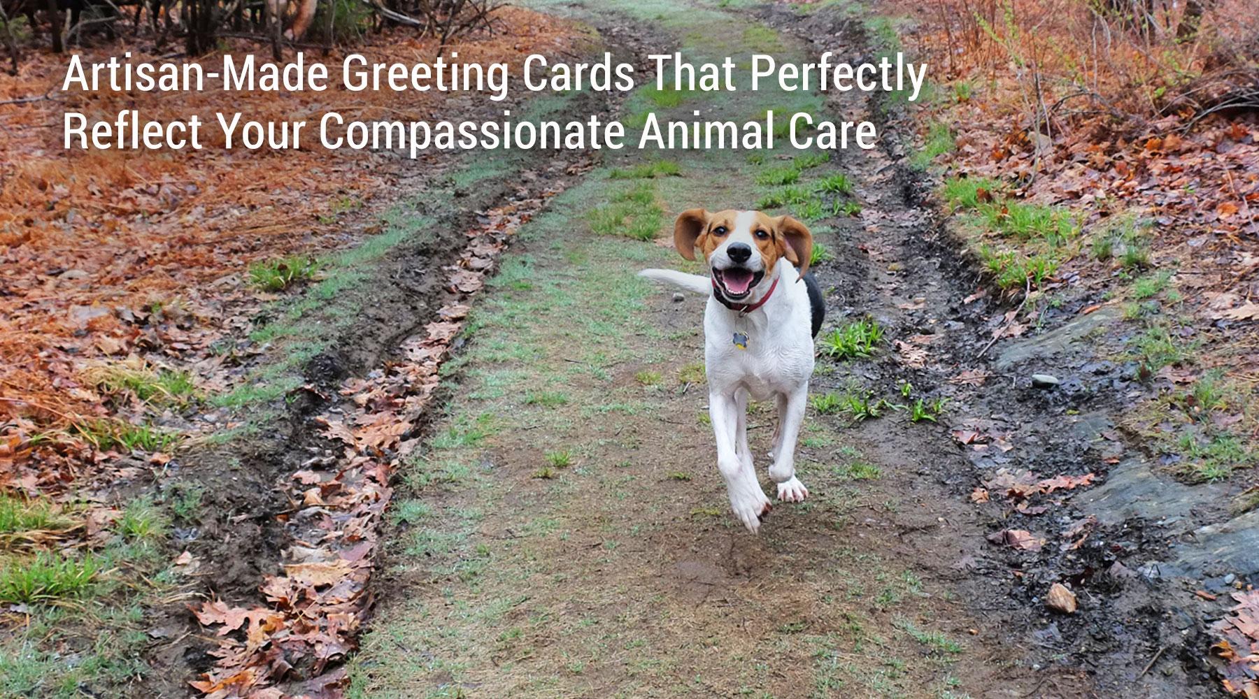 cards for animal condolence, sympathy, gratitude and holiday designs